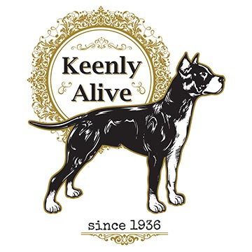keenly alive stafford illustration tshirt design